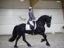 EK Dressuur Friese paarden 2017 - eerste editie